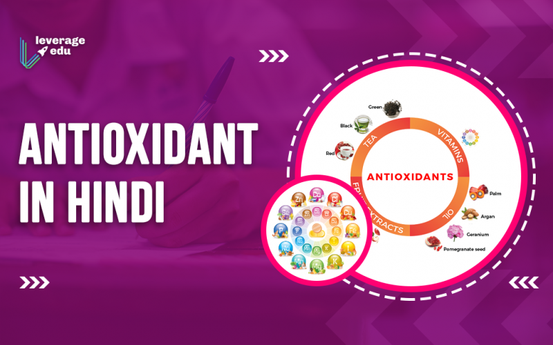 Antioxidant in Hindi