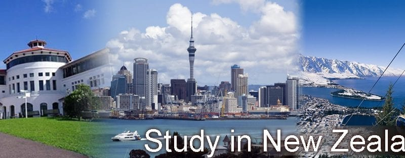 Study In New Zealand: Things To Know Before You Go- Leverage Edu