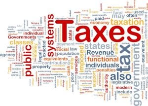 Tax policy analyst