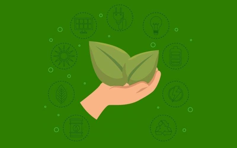 Career in Environmental Management
