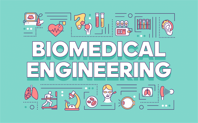 Biomedical Engineering Colleges