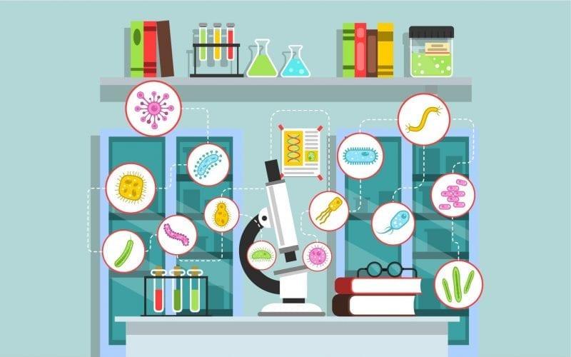 MSc Medical Microbiology
