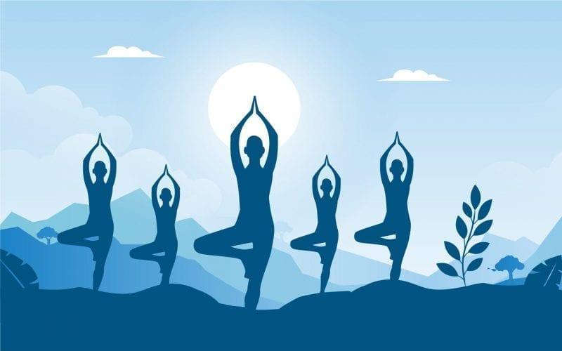 Yoga Certificate Courses