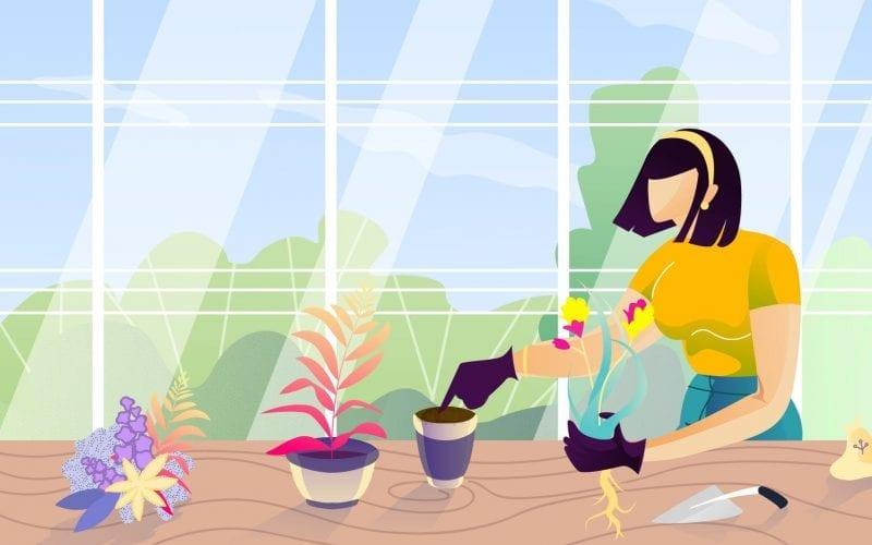 Career in Botany