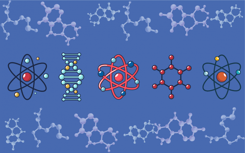 MSc in Molecular Biology
