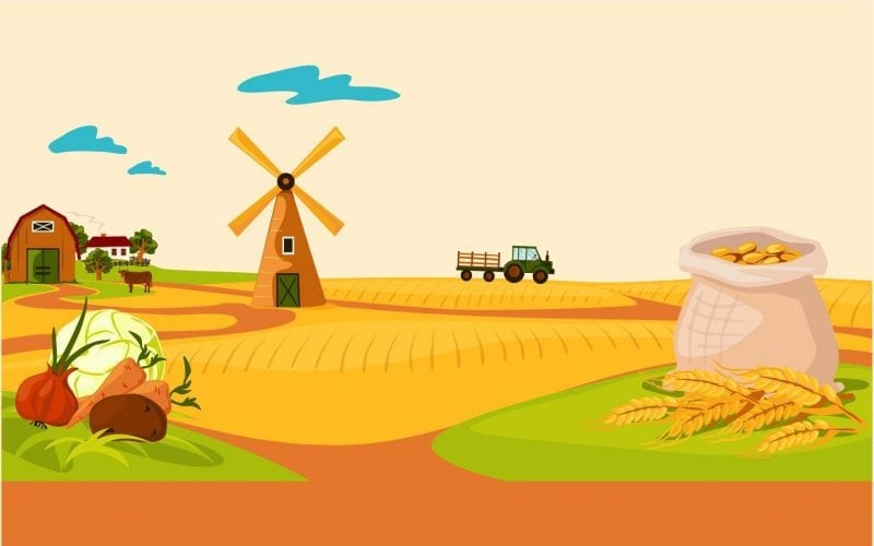Universities for Agriculture