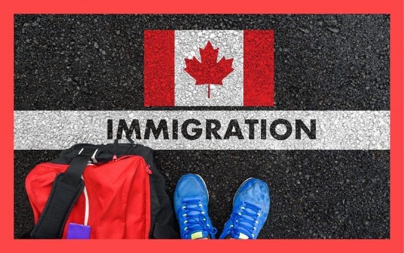 Canada approves study permits