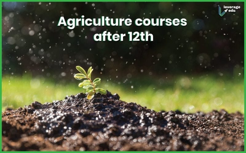 Agricultural Courses after 12th