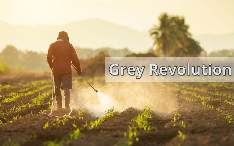Grey Revolution