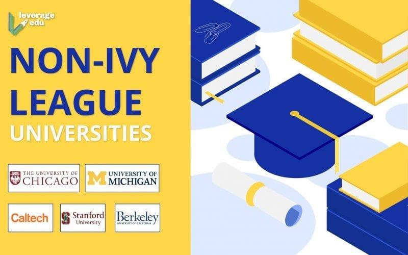 non-Ivy League universities
