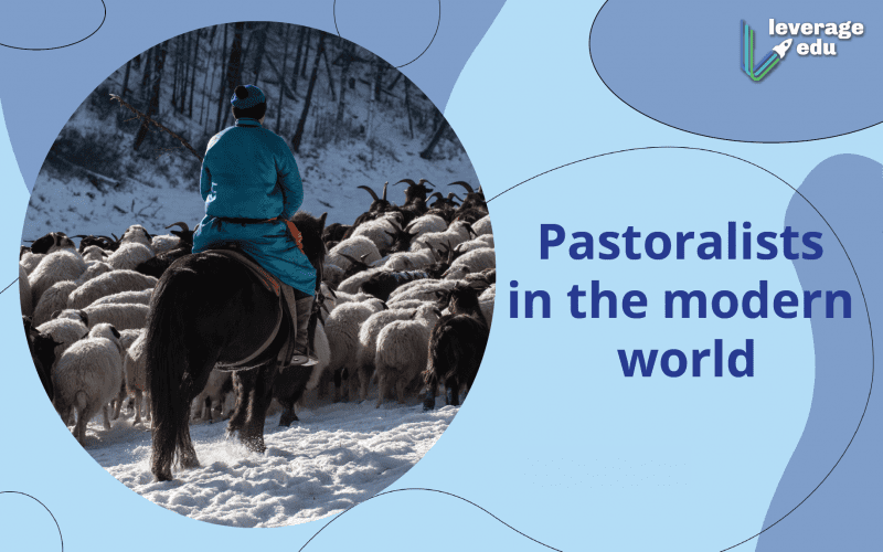 pastoralists in the modern world