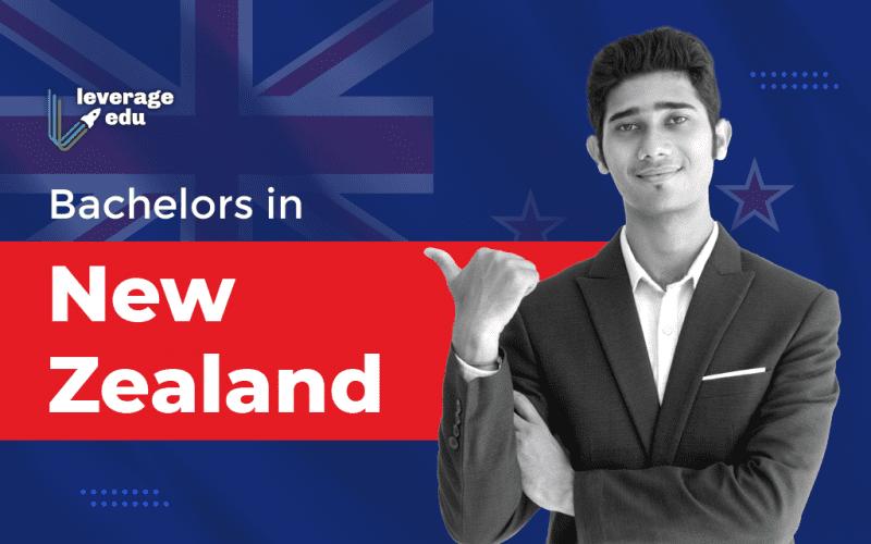 Bachelors in New Zealand