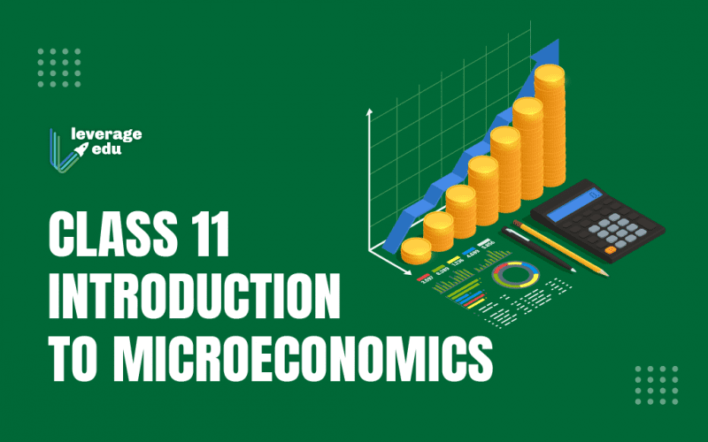 Class 11 Introduction to Microeconomics