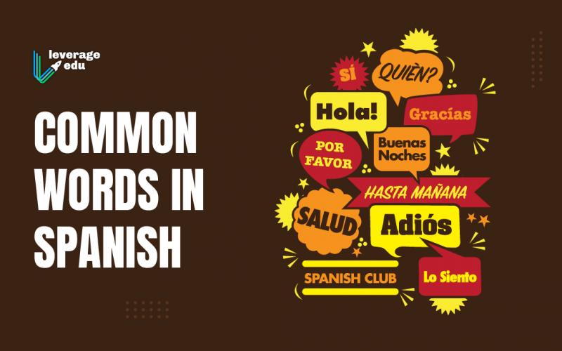 Common Words in Spanish