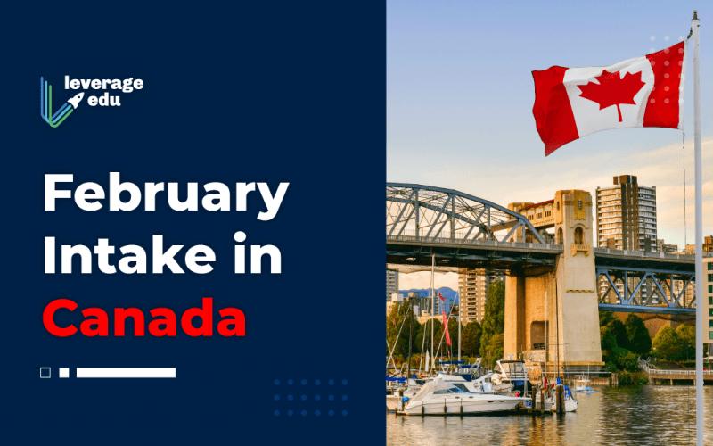 February Intake in Canada