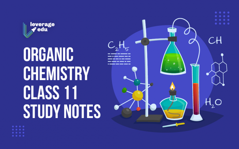 Organic Chemistry Class 11 Study Notes
