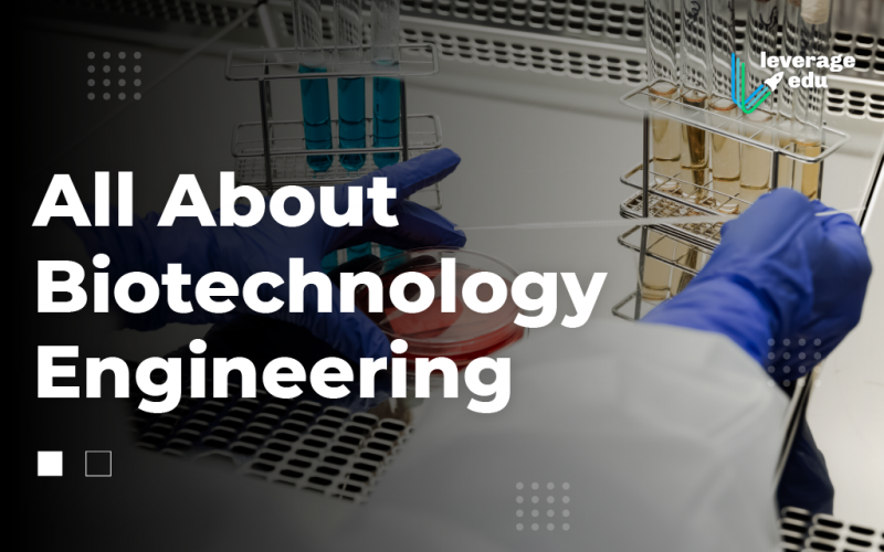 Biotechnology Engineering