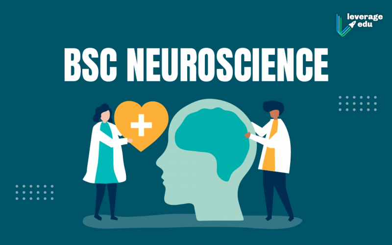BSc Neuroscience