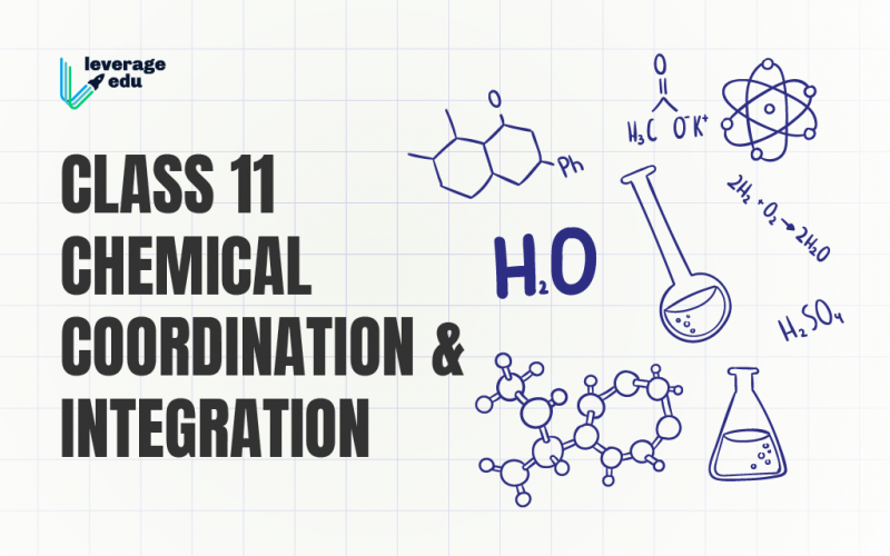 Class 11 Chemical Coordination and Integration