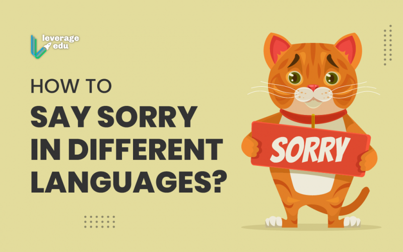 Sorry in Different Languages