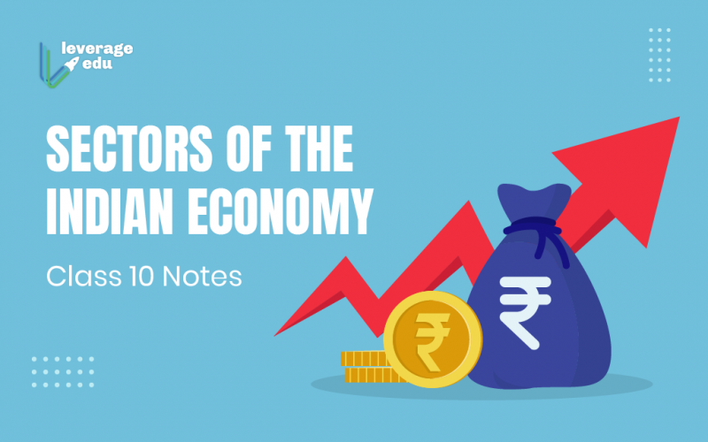 Sectors of the Indian Economy Class 10 Notes
