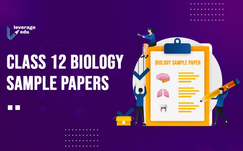 Class 12 Biology Sample Paper