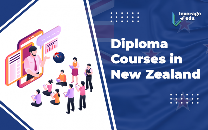 Diploma courses in New Zealand
