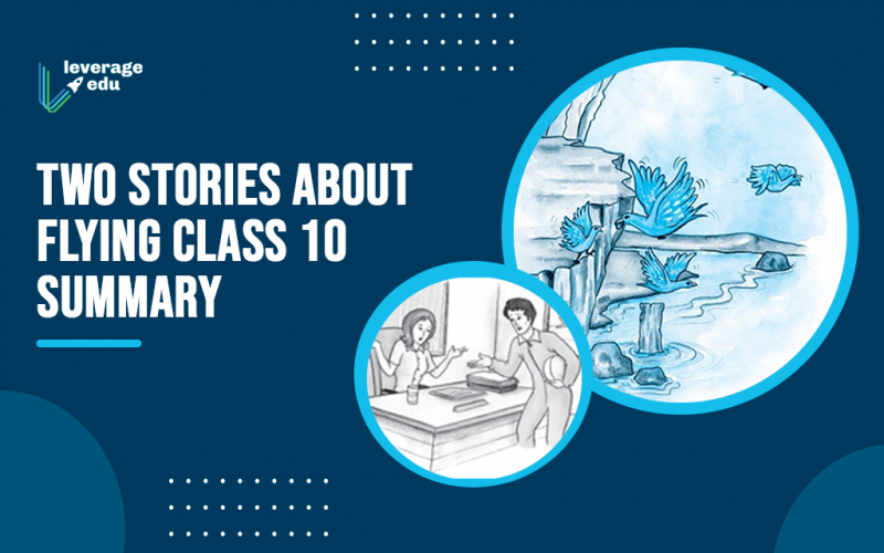 Two Stories About Flying Class 10