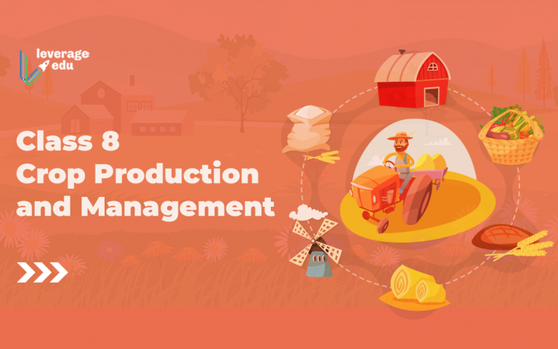 Class 8 Crop Production and Management