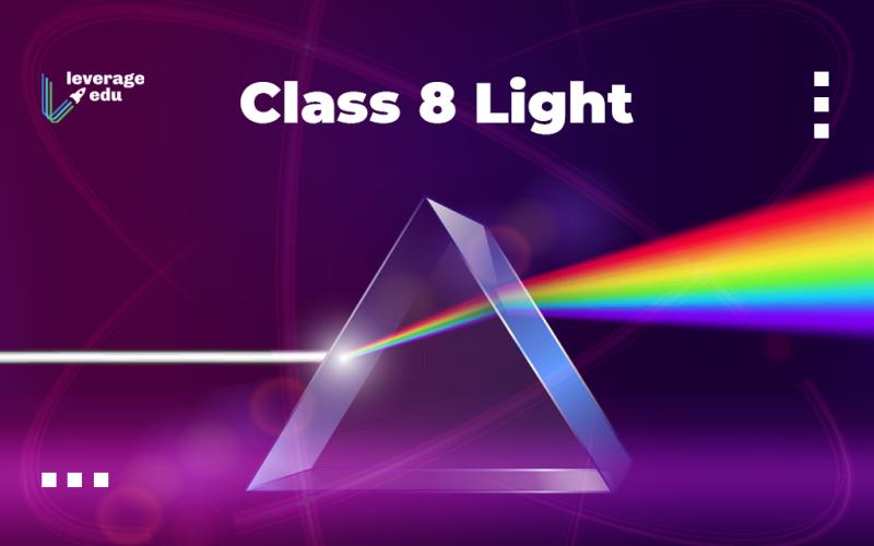 Class 8 Light