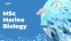 MSc Marine Biology