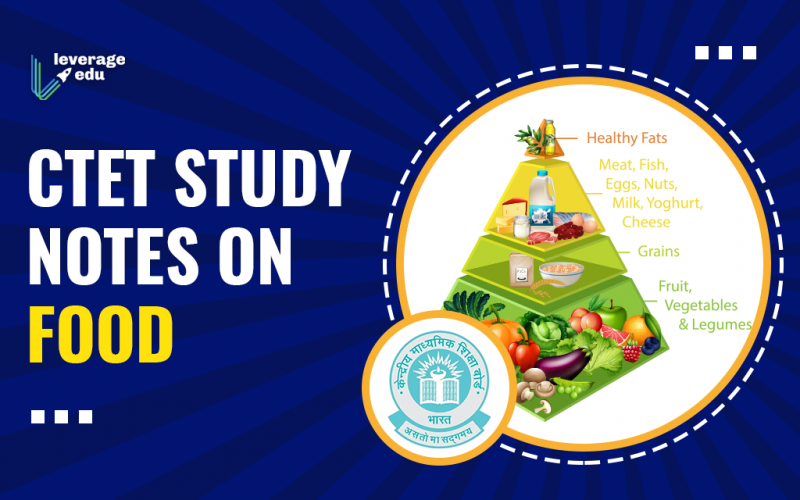 CCTET Study Notes on Food