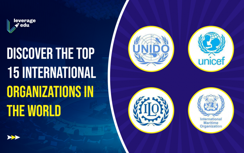 Discover the Top 15 International Organizations in the World (1)