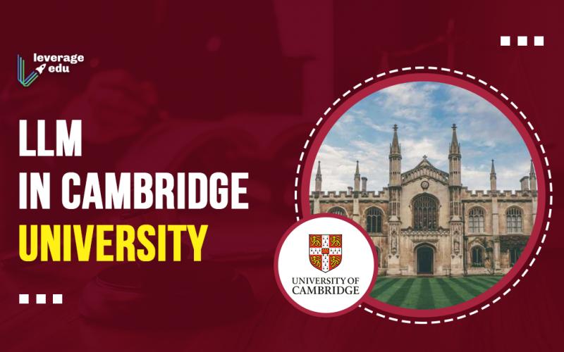 LLM in Cambridge University