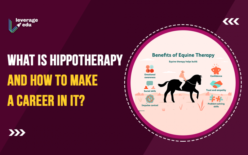 What is Hippotherapy and How to Make a Career in it