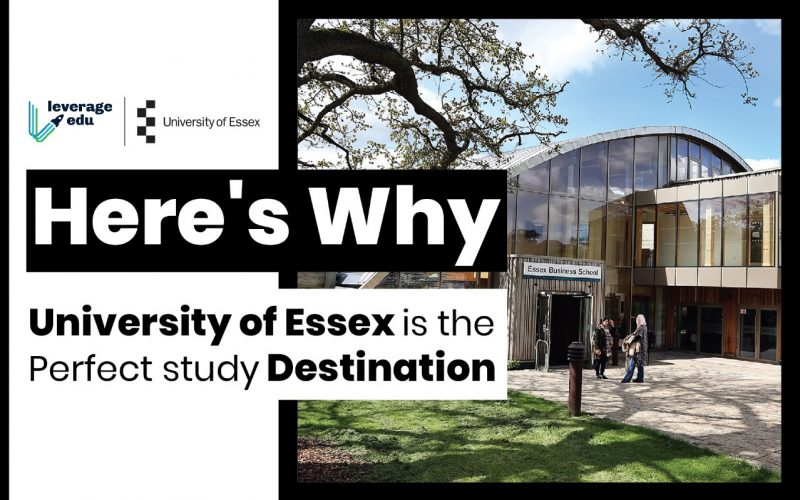 Here's Why University of Essex is the Perfect Study Destination