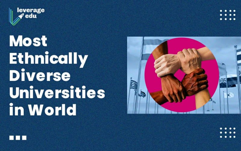 Most Ethnically Diverse Universities in the World