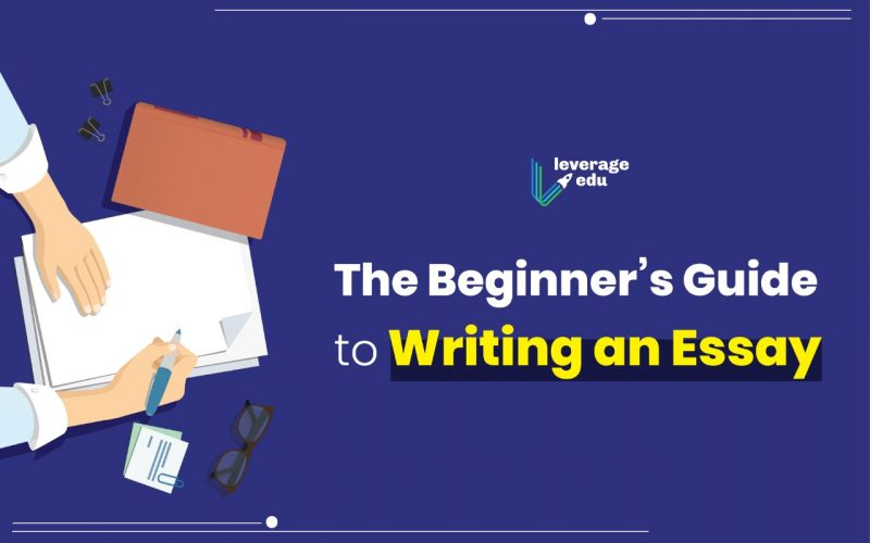 The Beginners Guide to Writing an Essay