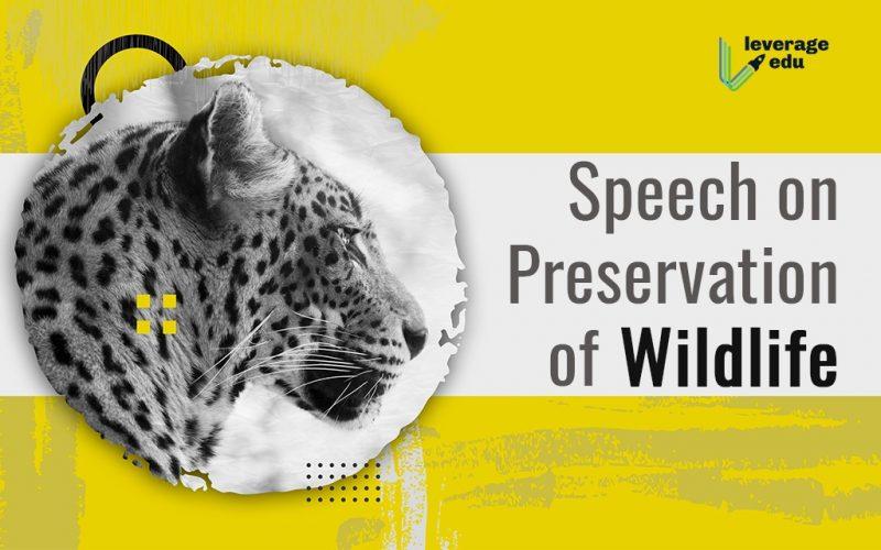 Preservation of Wildlife Speech