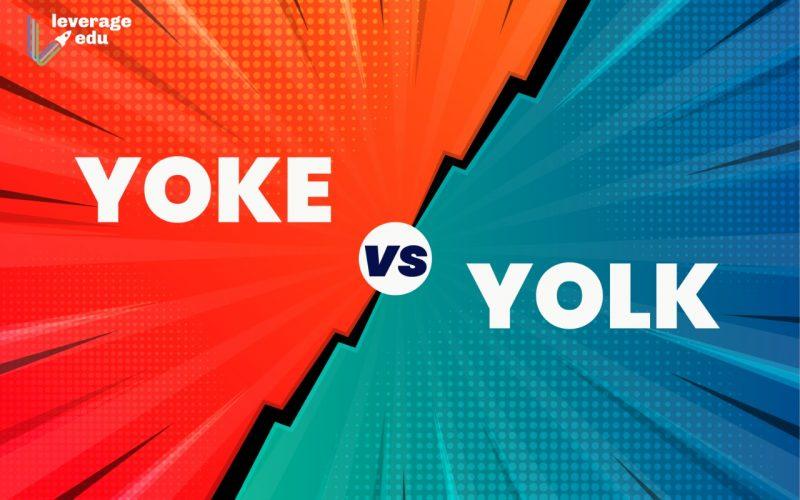 Yolk vs Yoke
