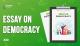 Essay on Democracy