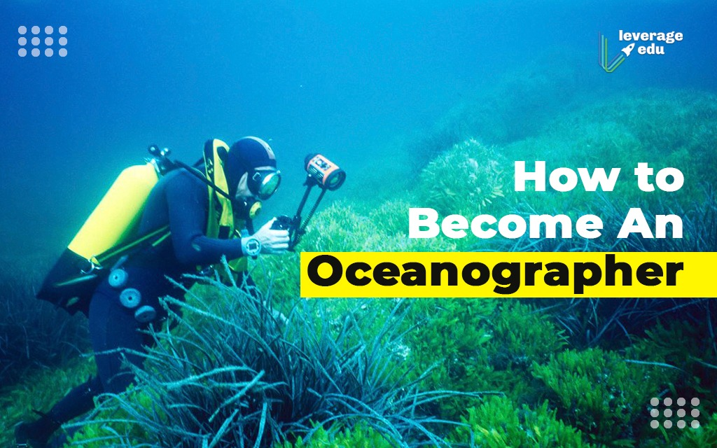How to Become an Oceanographer?